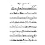 Allegro Appassionata, Op.43 Saint-Saens
